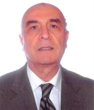 Habib Mamarbachi, Real Estate Broker