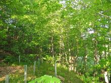 Lot for sale in Saint-Ferréol-les-Neiges, Capitale-Nationale, Rue des Carouges, 8703999 - Centris