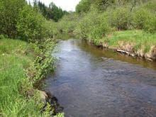 Terrain à vendre à Arundel, Laurentides, Chemin  Twin-Lake, 9550565 - Centris.ca