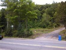 Terrain à vendre à Sainte-Adèle, Laurentides, boulevard de Sainte-Adèle, 9005595 - Centris.ca