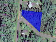 Terrain à vendre à Sainte-Agathe-des-Monts, Laurentides, Rue de l'Orée-du-Bois, 10124493 - Centris.ca