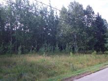 Terrain à vendre à L'Isle-aux-Coudres, Capitale-Nationale, Chemin  Desgagnés, 20564020 - Centris.ca