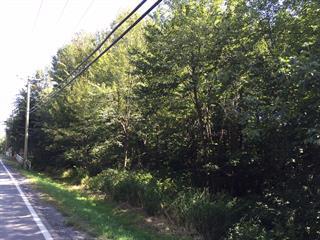 Terrain à vendre à Saint-Lazare, Montérégie, Chemin  Sainte-Angélique, 9765862 - Centris.ca