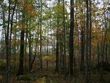 Terrain à vendre à Lac-des-Écorces, Laurentides, Montée  Plouffe Ouest, 14570169 - Centris.ca