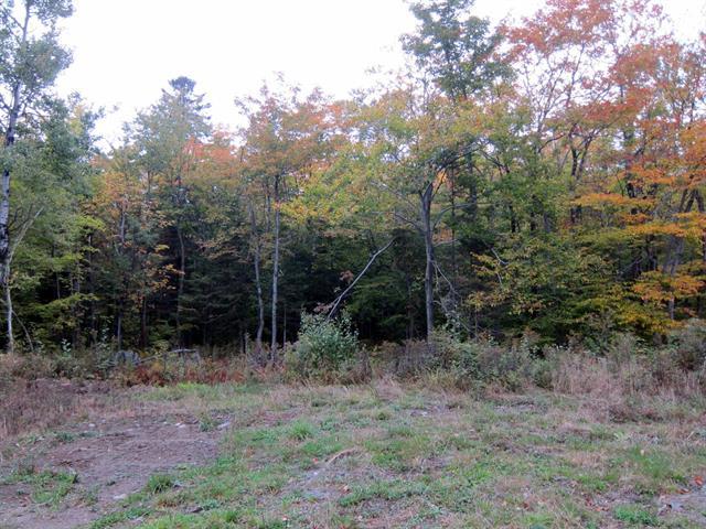 Land for sale in Bolton-Ouest, Montérégie, Chemin de la Tour, 26405908 - Centris.ca