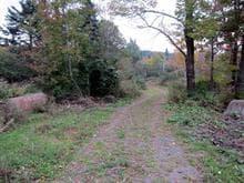 Terrain à vendre à Bolton-Ouest, Montérégie, Chemin de la Tour, 16934487 - Centris