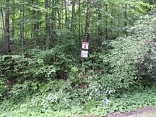 Lot for sale in Denholm, Outaouais, 3, Chemin du Poisson-Blanc, 18077967 - Centris.ca