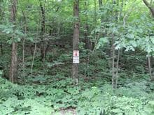Lot for sale in Denholm, Outaouais, 4, Chemin du Poisson-Blanc, 12933159 - Centris.ca
