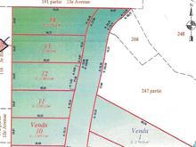 Terrain à vendre à Senneterre - Ville, Abitibi-Témiscamingue, 270, 4e Rue Est, 23918272 - Centris.ca