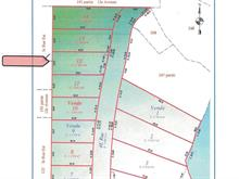 Terrain à vendre à Senneterre - Ville, Abitibi-Témiscamingue, 4e Rue Est, 11353196 - Centris.ca