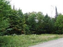 Terrain à vendre à Montcalm, Laurentides, Chemin du Lac-Richer Sud, 19925072 - Centris.ca