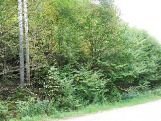 Lot for sale in Montcalm, Laurentides, Chemin du Lac-Richer Sud, 17055154 - Centris.ca
