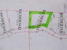 Lot for sale in Montcalm, Laurentides, Chemin du Lac-Richer Sud, 16878800 - Centris.ca