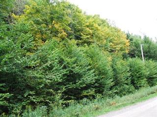Lot for sale in Montcalm, Laurentides, Chemin du Lac-Richer Sud, 16878800 - Centris.ca