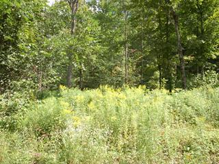 Lot for sale in Val-David, Laurentides, Chemin  Paquette, 22733648 - Centris.ca