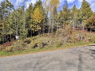 Terrain à vendre à Lac-Sainte-Marie, Outaouais, Chemin  Lemens, 28011233 - Centris.ca