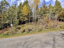 Terrain à vendre à Lac-Sainte-Marie, Outaouais, Chemin  Lemens, 20469258 - Centris.ca