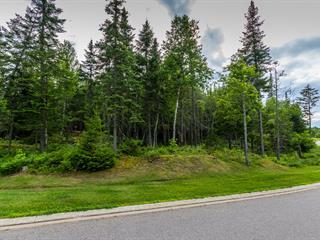 Lot for sale in Mont-Tremblant, Laurentides, 224, Chemin de la Réserve, 9016629 - Centris.ca