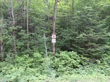 Lot for sale in Denholm, Outaouais, 2, Chemin du Poisson-Blanc, 26315267 - Centris.ca