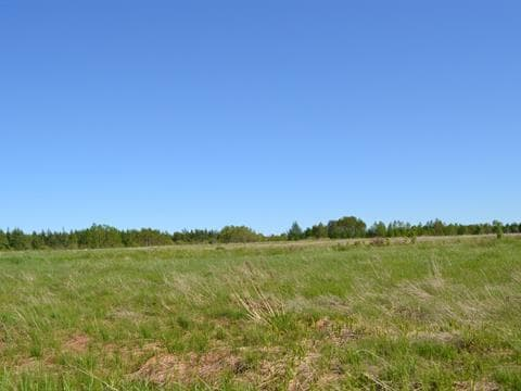 Lot for sale in Sainte-Luce, Bas-Saint-Laurent, Route  132 Ouest, 26503606 - Centris.ca