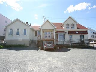 Bâtisse commerciale à vendre à Rouyn-Noranda, Abitibi-Témiscamingue, 52, Avenue du Lac, 17504587 - Centris.ca