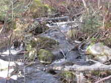 Terrain à vendre à Saint-Charles-de-Bourget, Saguenay/Lac-Saint-Jean, 22, Chemin des Épinettes, 14644061 - Centris.ca