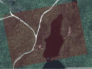Lot for sale in Denholm, Outaouais, 1, Chemin du Poisson-Blanc, 13318883 - Centris.ca