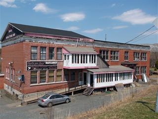 Immeuble à revenus à vendre à Thetford Mines, Chaudière-Appalaches, 4069 - 4071, Rue  Saint-André, 18908720 - Centris.ca
