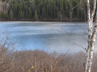 Lot for sale in Saint-Charles-de-Bourget, Saguenay/Lac-Saint-Jean, 14, Chemin des Épinettes, 13199713 - Centris.ca