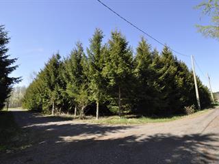 Terrain à vendre à Saint-Roch-des-Aulnaies, Chaudière-Appalaches, Rue de l'Anse-des-Marins, 20737866 - Centris.ca