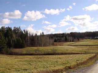 Terrain à vendre à Cap-Saint-Ignace, Chaudière-Appalaches, Chemin des Érables Ouest, 15084767 - Centris.ca