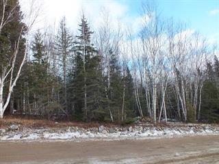 Lot for sale in Petite-Rivière-Saint-François, Capitale-Nationale, Chemin du Hameau, 27871715 - Centris.ca