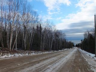 Terrain à vendre à Petite-Rivière-Saint-François, Capitale-Nationale, Chemin du Hameau, 27871715 - Centris.ca