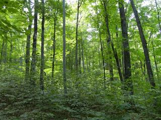 Lot for sale in Amherst, Laurentides, Chemin  Nantel Sud, 17639428 - Centris.ca