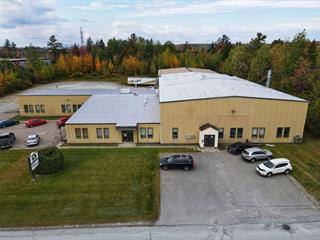 Industrial building for sale in Sherbrooke (Les Nations), Estrie, 459 - 475, Rue  Pépin, 13929552 - Centris.ca