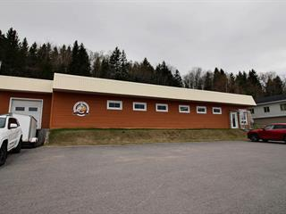 Commercial building for sale in La Malbaie, Capitale-Nationale, 1925, boulevard  De Comporté, 27720608 - Centris.ca