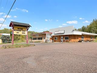 Bâtisse commerciale à vendre à Litchfield, Outaouais, 1068, Route  148, 27662704 - Centris.ca
