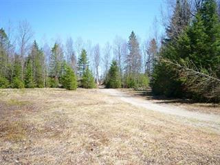 Terrain à vendre à Notre-Dame-Auxiliatrice-de-Buckland, Chaudière-Appalaches, Chemin des Pins, 23063944 - Centris.ca