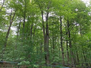 Terre à vendre à Roxton Pond, Montérégie, 821Z, 3e rg de Roxton Ouest, 25179834 - Centris.ca