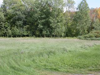Lot for sale in Bryson, Outaouais, Route  148, 21822297 - Centris.ca