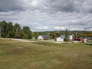 Terrain à vendre à L'Île-du-Grand-Calumet, Outaouais, Rue  Gauthier, 10009509 - Centris.ca