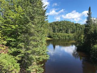 Terrain à vendre à Rivière-à-Pierre, Capitale-Nationale, 801, Chemin des Mésanges, 23509825 - Centris.ca