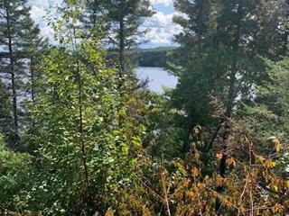 Lot for sale in Saint-Ambroise, Saguenay/Lac-Saint-Jean, Rue de la Décharge, 24216243 - Centris.ca