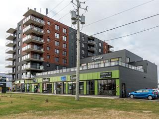Condo for sale in Lévis (Les Chutes-de-la-Chaudière-Ouest), Chaudière-Appalaches, 989, Route des Rivières, apt. 303, 13451154 - Centris.ca