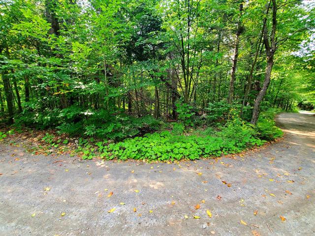 Terrain à vendre à Saint-Sauveur, Laurentides, Chemin du Lac-Breton, 25227771 - Centris.ca