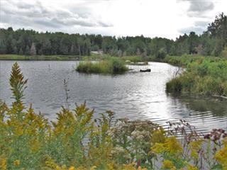 Terrain à vendre à Magog, Estrie, 03, Chemin  Fortin, 15296904 - Centris.ca
