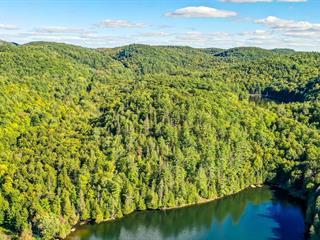 Terrain à vendre à La Pêche, Outaouais, Chemin du Lac-Pike, 11086588 - Centris.ca