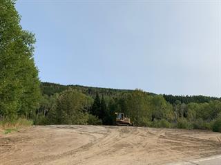 Terrain à vendre à Ferland-et-Boilleau, Saguenay/Lac-Saint-Jean, 1263, Route  381, 25462654 - Centris.ca