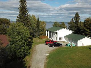 Maison à vendre à Rivière-Héva, Abitibi-Témiscamingue, 47, Rue des Trembles, 17499342 - Centris.ca