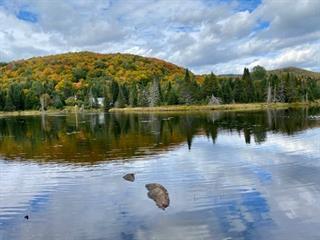 Terrain à vendre à Val-des-Lacs, Laurentides, Chemin  Corbeil, 24851539 - Centris.ca